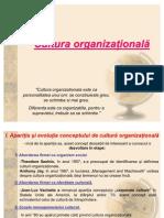 ML 3 Cultura Organizationala 1