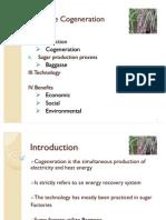 Bioenergy Ppt Baggasse on