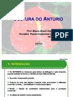 Aula Anturio UFPR 2011/1