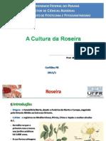 Aula Rosa UFPR 2011/1