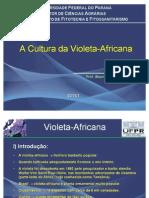 Aula Violeta UFPR 2011/1