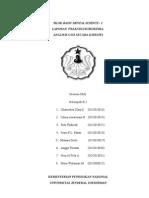 Laporan Praktikum Biokimia Bds-1 Sms 2 Kg 2010