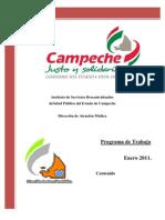 Programa de Trabajo 2011 DAM