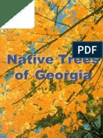 Native Trees Georgia