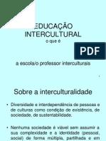 Educacao Intercultural Conceitos