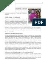 Sublimacion PDF