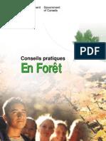 survivre en forêt