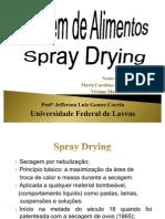 Trabalho Secagem Por Spray Drying