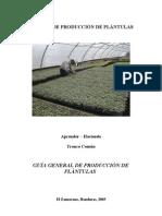 Produccion de plantulas