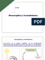 CLASE 7 Bioenergetica