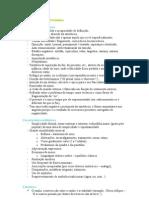 Síntese da matéria de 12º. Ano de Português - Preparação para o Exame