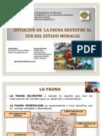Fauna Monagas