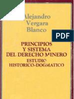 MINERIA Principios Sistema Estudio