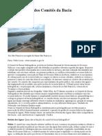 A importância dos Comitês da Bacia Hidrográfica
