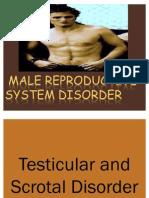 James Ppt Testeicular