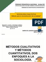 SOCIOLOGIA CUALITATIVA (12)
