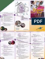 De KKTG Flyer Altstadtfest2011 WEB 20110610152015