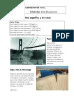 Estabilidad Guía 2010