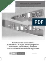 Adecuaciones_curriculares_puente
