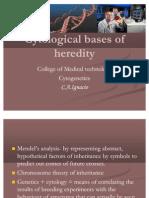 Cytological Bases of Heredity