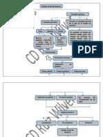 Mapa Conceptual Estado Social de Derecho
