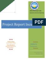 Incubator Report