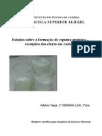 relatorio espuma proteica