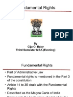 Laws for Business - Fundamental Rights