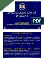 00_INMOVILIZACION_Introduccion