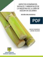 Responsabilidad Social Ambiental Industria Azucarera