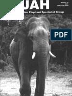 South India-Asian Elephant 2006 Gajah