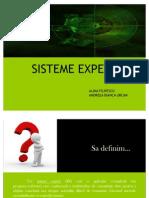 Sisteme Expert