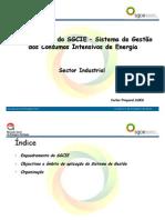 Apresentação SGCIE