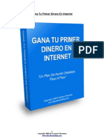 Plan-Accion Dinero en Internet