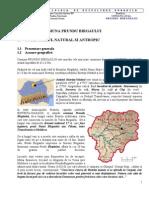 Strategia de Dezvoltare Durabila Prundul Bargaului 2007-2013
