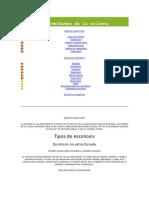 Deform Ida Des de La Columna