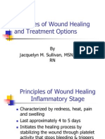 Principles of Wound Healing and Treatment Options
