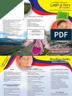 Plegable -Programa de Gobierno
