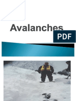 Avalanches 3
