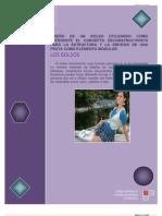Documento de Work Jessica Ataballo