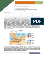 Potenciales_de_membrana