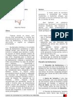 Geografia da Paraíba