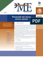 20 Prevención del cáncer cérvico uterino