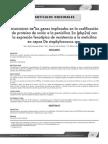 Asociación de los genes implicados en la codificación de proteinas de union a penicilina 2a