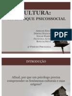13062011 CULTURA Um Enfoque Psi Cos Social