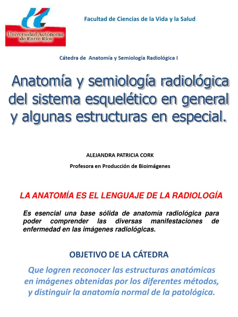 3. Anatomía y semiología radiológica del sistema esquelético en ...