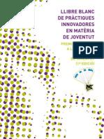 Llibre blanc de pràctiques innovadores en matèria de joventut
