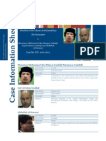 Official ICC Case Information (English)