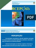 percepo-visual-oficial-1218756200829976-9