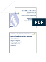 Natural Gas STAR EPA Dehydration